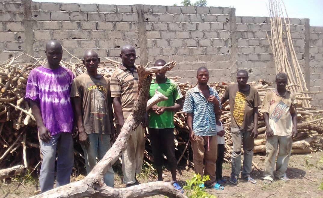 Aménagement agricole à Sokodé